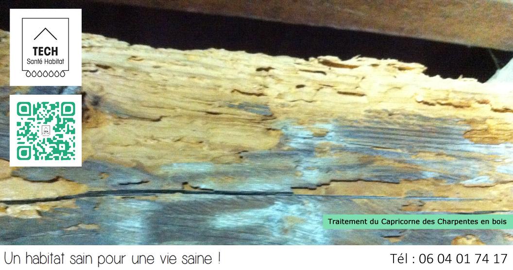 Tech Santé Habitat Traitement anti moisissures Condensation, Traitements anti mérules  # Traitement Anti Moisissure Bois
